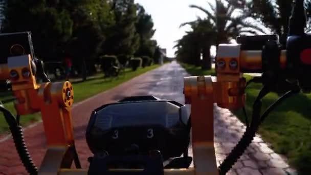 Mit dem Elektrofahrrad auf rotem Radweg mit Palmen in der Kurstadt