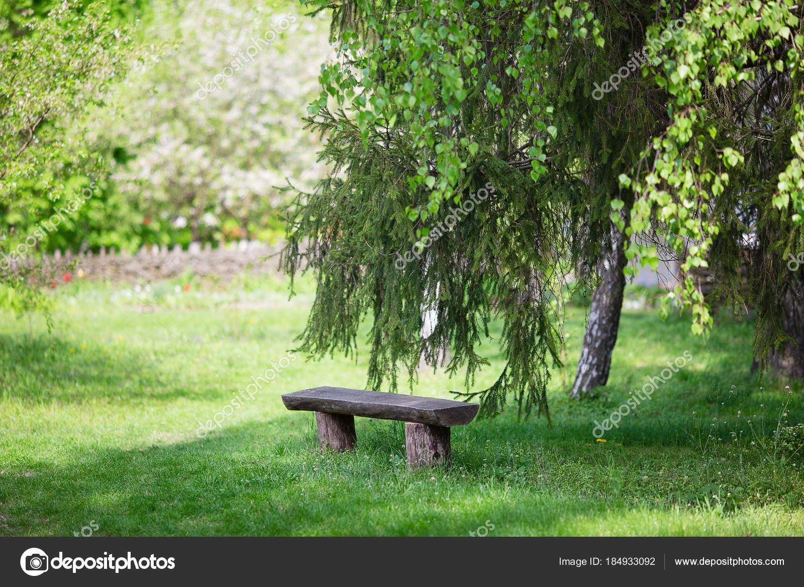 Banc Bois Rustique Dans Parc Forêt Banc Jardin Ancien — Photographie ...