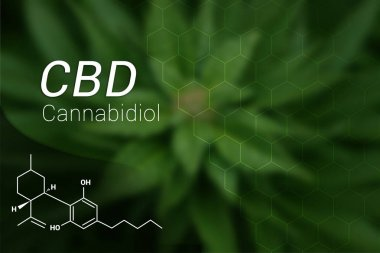 CBD Cannabidiol Oil Formula on Marijuana Leaf BackGround