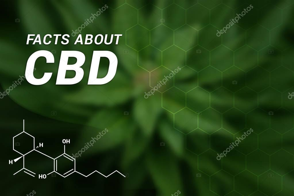Facts about CBD | CBD Cannabidiol | Medical Marijuana | Cannabis