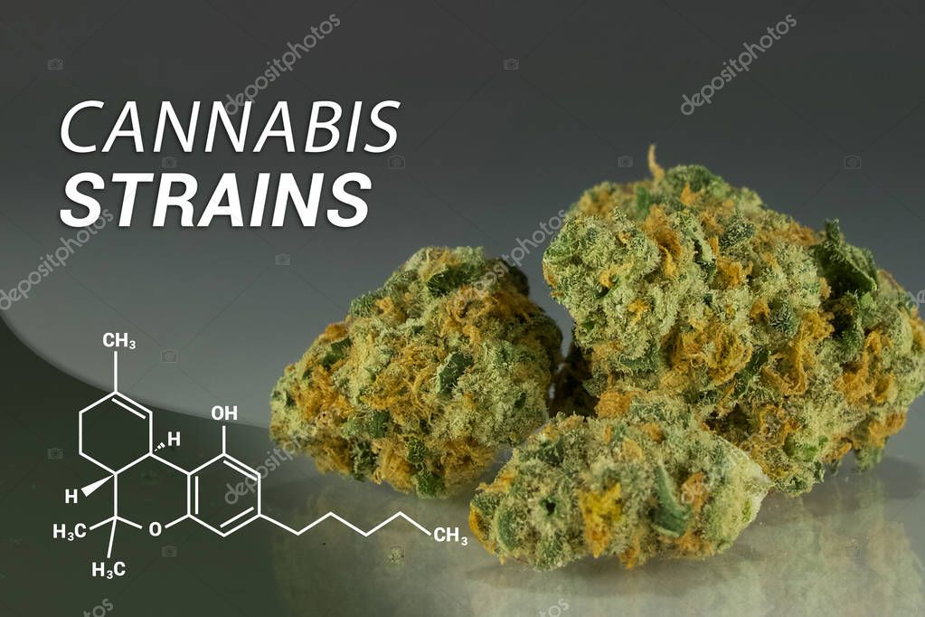 Cannabis Strains | Marijuana Strains | Medical Marijuana | Cannabis