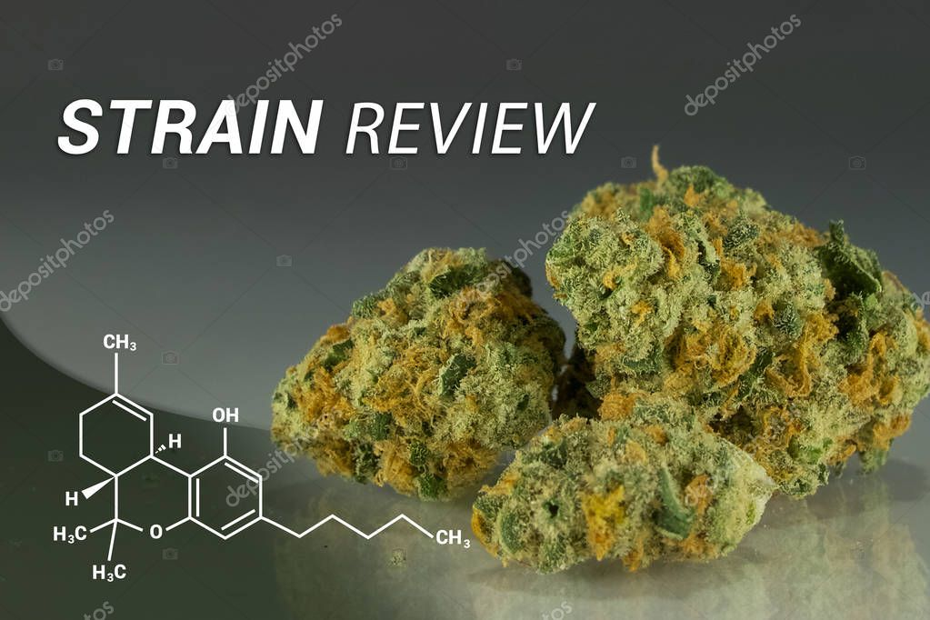 Marijuana Strain Review | Review | Medical Marijuana | Cannabis