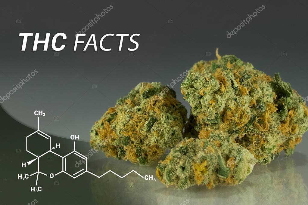 THC Facts | THC | Medical Marijuana | Cannabis