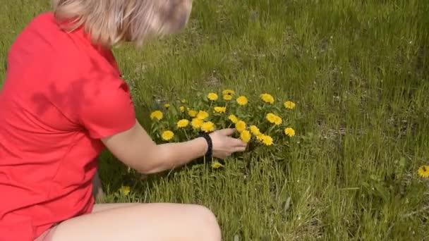 Krásná blonďatá dívka slzy pampelišky květiny. Jarní kvetoucí Pampeliška