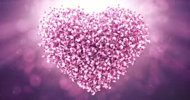Pink Rose Sakura Flower Petals In Lovely Heart Shape Background Loop 4k