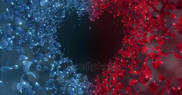 Red Blue Rose Flower Petals In love Heart Shape Background Placeholder Loop 4k