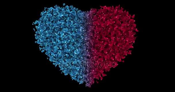 Romantic Red Blue Rose Flower Petals In Heart Shape Alpha Matte Loop 4k