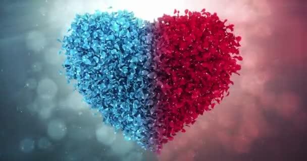 Red Blue Rose Flower Petals In Love Heart Valentine Wedding Background Loop 4k