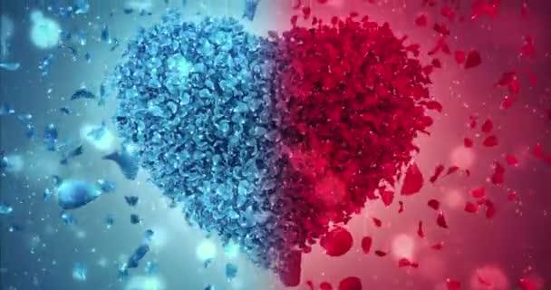 Červené a modré růže květ padající okvětní lístky lásky srdce svatební pozadí smyčky 4k