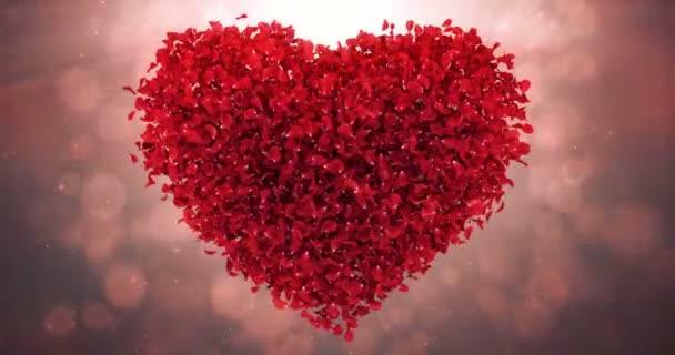 Piros rózsa virág szirmai szerelem szív Valentin esküvői háttérben hurok 4k