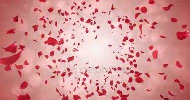 Létající romantické červené růže okvětní pádu pozadí smyčka 4k