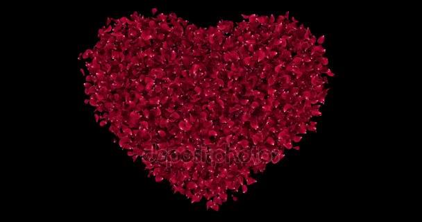Romantikus piros rózsa virág szirmai a szív alakú alfa Matt hurok 4k