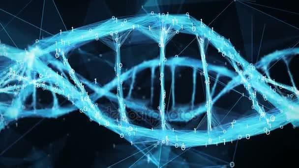 Abstraktní pozadí pohybu - digitální binární mnohoúhelník Plexus Dna molekule 4k smyčka