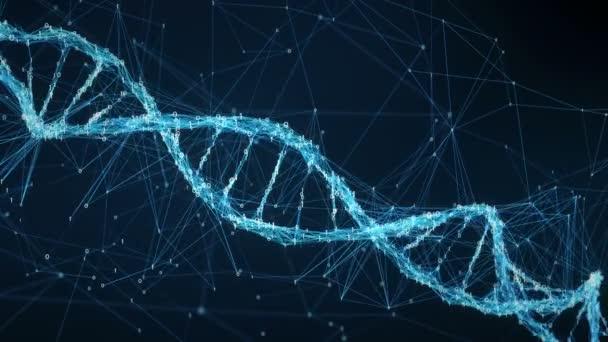 Abstraktní pozadí pohybu - digitální binární Plexus Dna molekule 4k smyčka