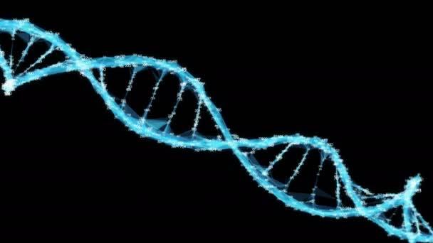 Digital Polygon Plexus DNA molecule random digits Loop Alpha Channel
