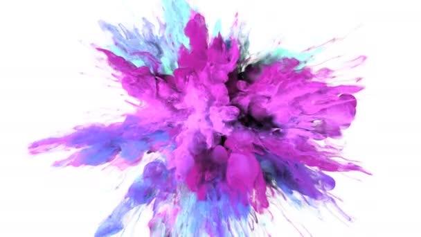 Color Burst - barevné fialové růžové kouře exploze částice kapaliny Alfa podkladu