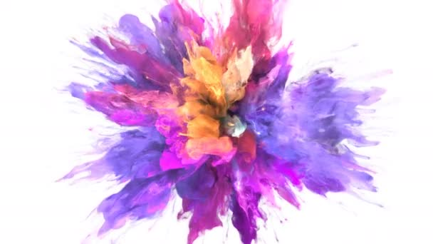 Color Burst - barevné fialové žlutý kouř exploze částice kapaliny Alfa podkladu