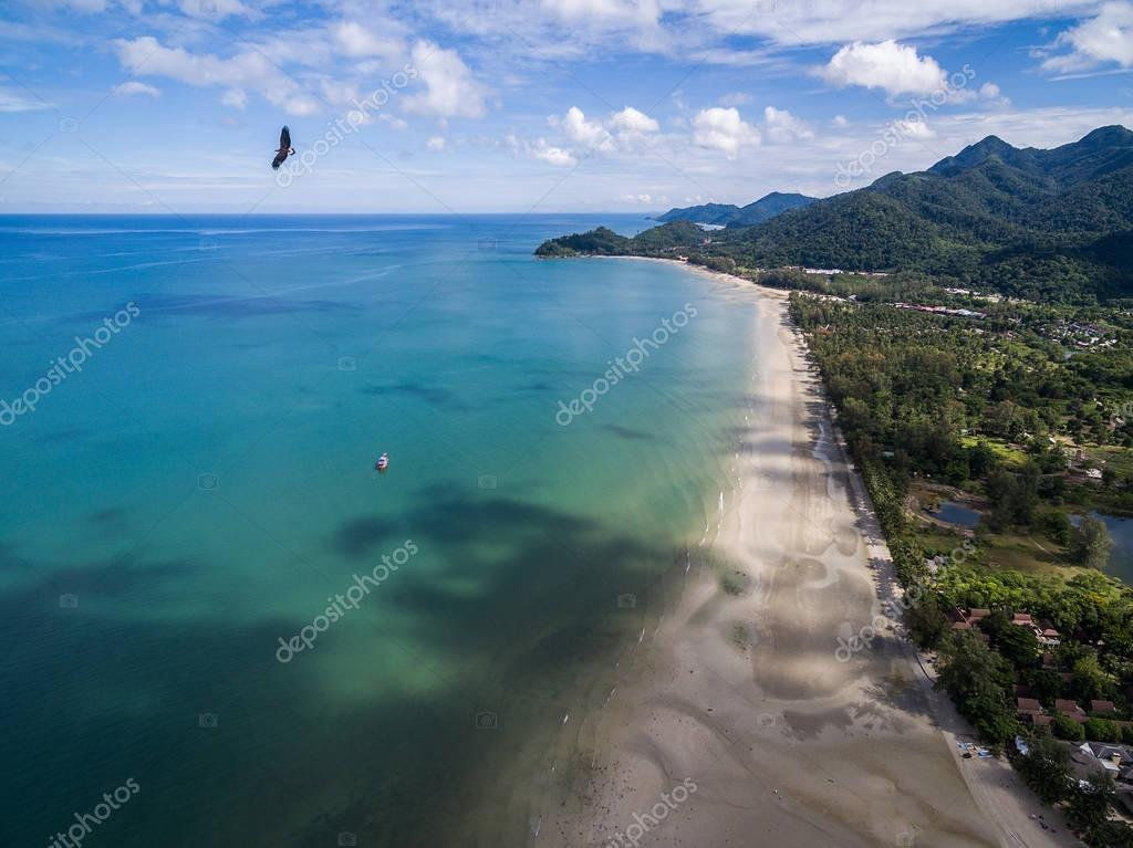 Eagle flying over beach and blue sea in Koh Chang
