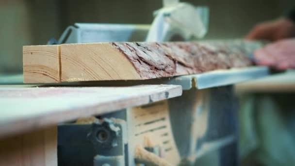 Fabelhaft Schneiden von Holz auf eine Holzfabrik. Clips von Holz Sägen &TG_97