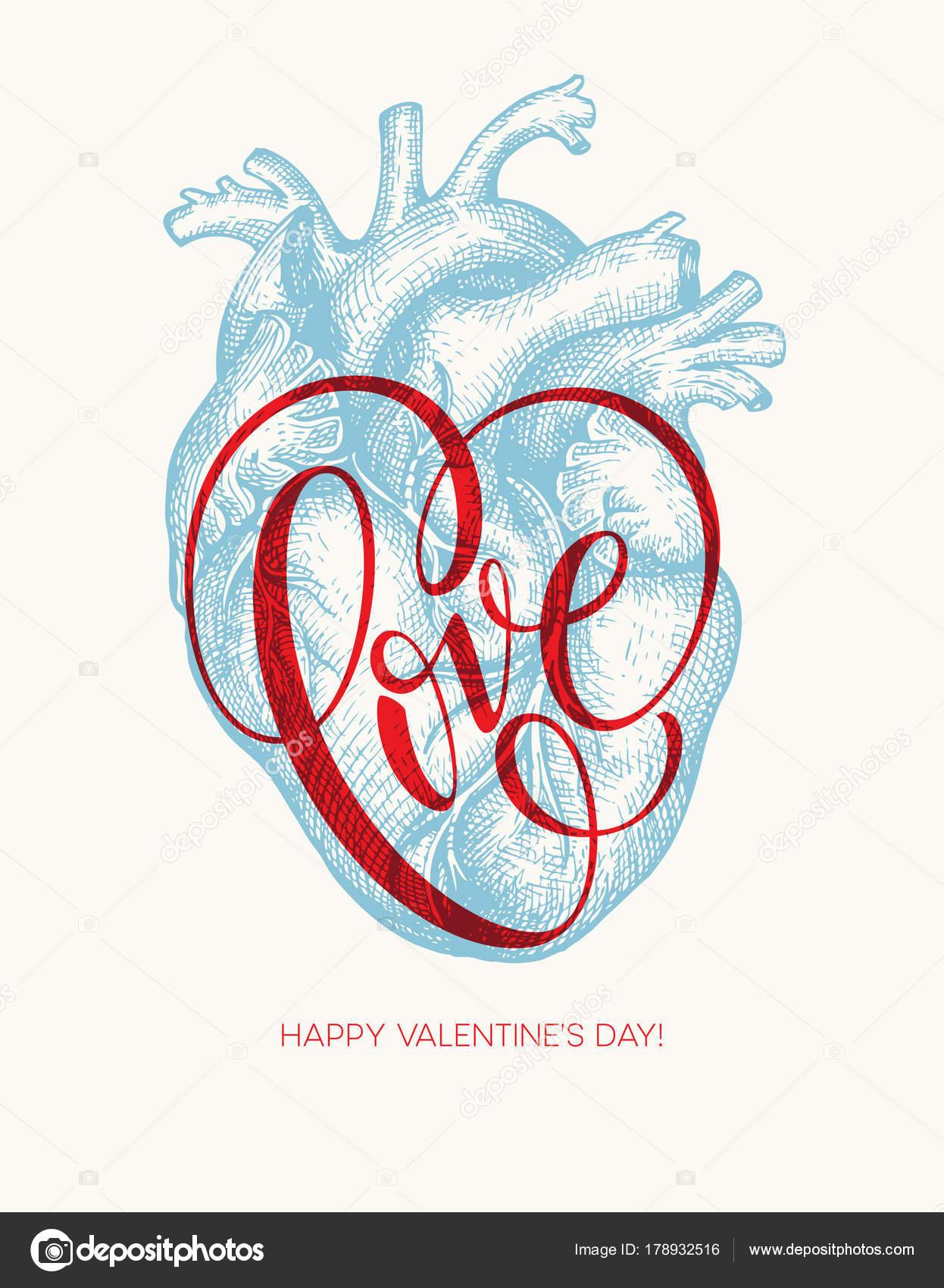 Tarjeta día de San Valentín con corazón humano y Letras de amor ...