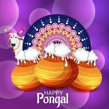 illustration of a background for Happy Pongal.