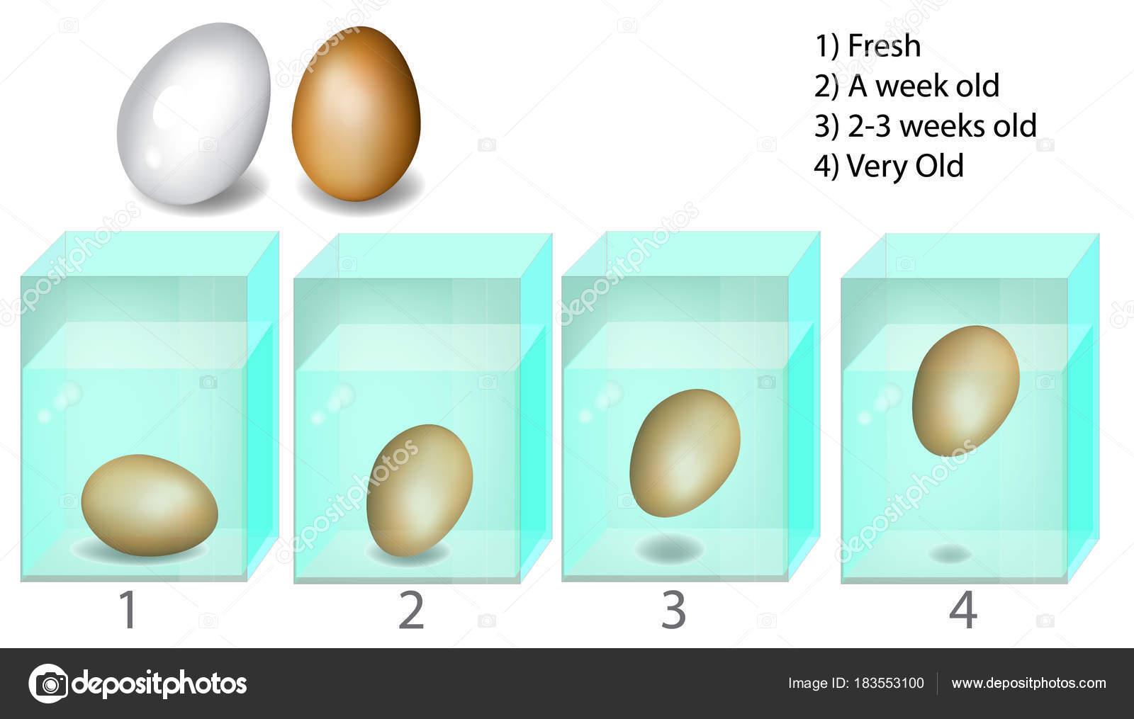 testa ägg i vatten