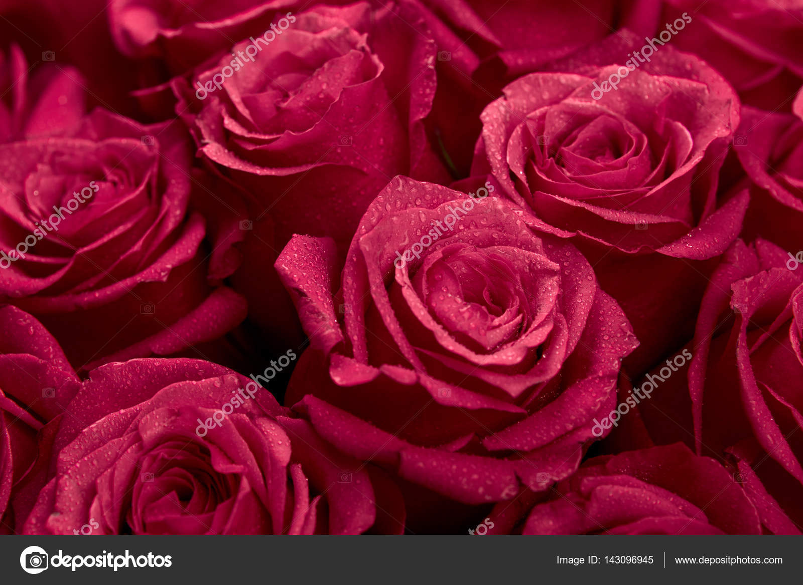 Bouquet of red colored rose flowers — Stock Photo © glazunofoto ...