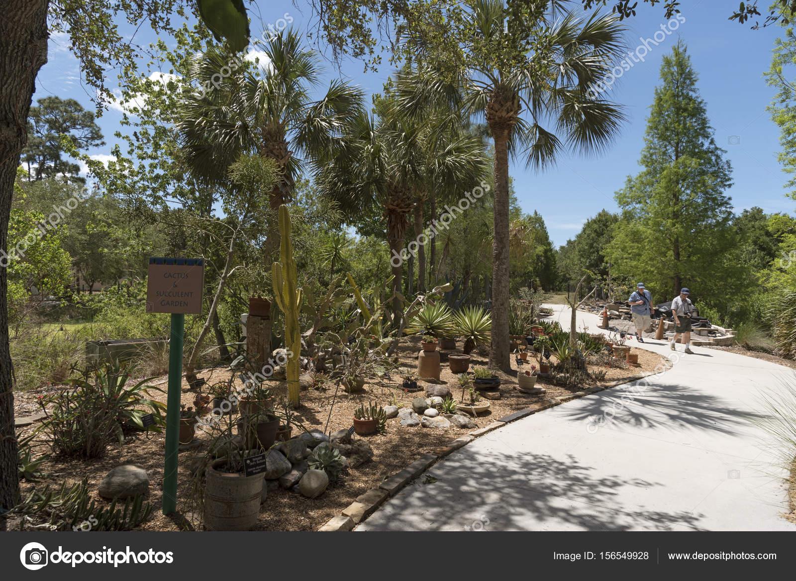 Cactus Garden t the Florida Botanic Garden in Largo FL USA