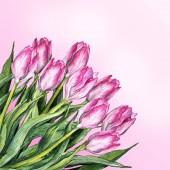 Fényképek Akvarell rózsaszín tulipán virág csokor összetétele természet elszigetelt beállítása