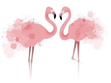 Vector illustration of couple pink flamingos with watercolor splatters and splashes stock vector