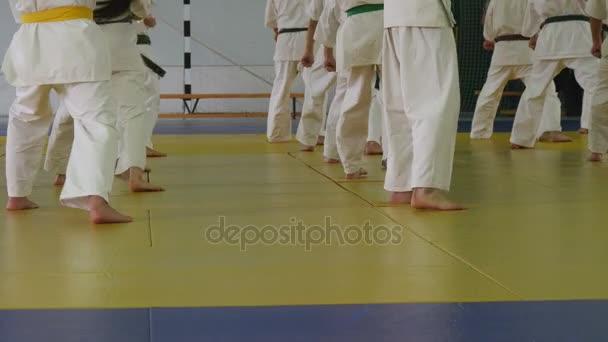 Kimonó állva tatami harcművészeti képzés gyermekek csoportja