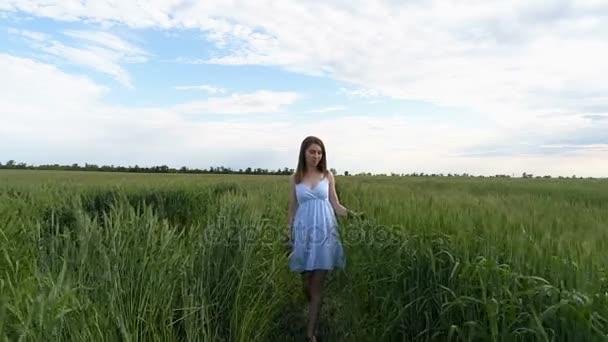 Krásná mladá dívka chodí pole zelené pšenice procházející ruku nad klásky