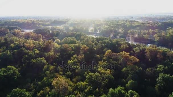 Podzimní les při západu slunce z ptačí pohled