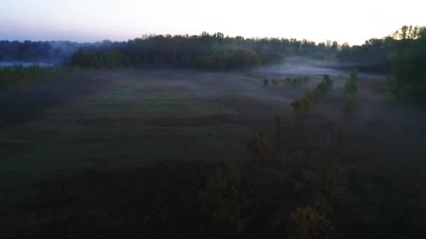 Podzimní les v mlze, za svítání z ptačí pohled. Listnaté a jehličnaté stromy
