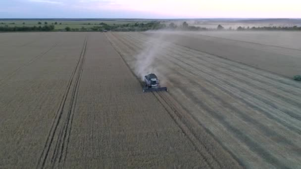 Letecká fotografie s DRONY kombajn pracuje v pšeničné pole při západu slunce
