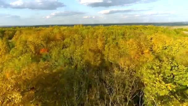 Podzimní les letecké fotografie. Sondu letí přes les a hory za slunečného dne
