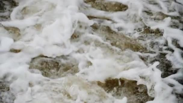 Bublající horské řeky. Volně žijících živočichů. Divoká horská řeka na jaře