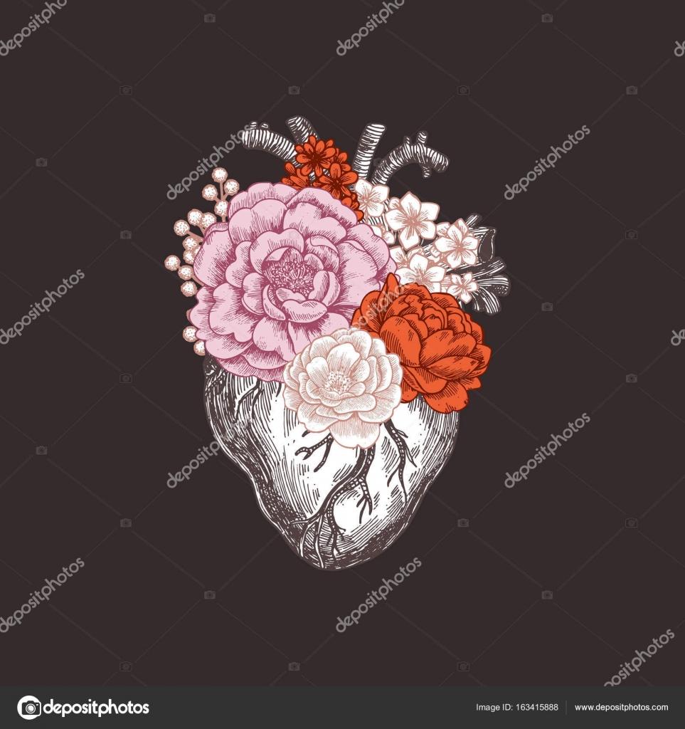 Tattoo anatomy vintage illustration. Floral romantic anatomical ...