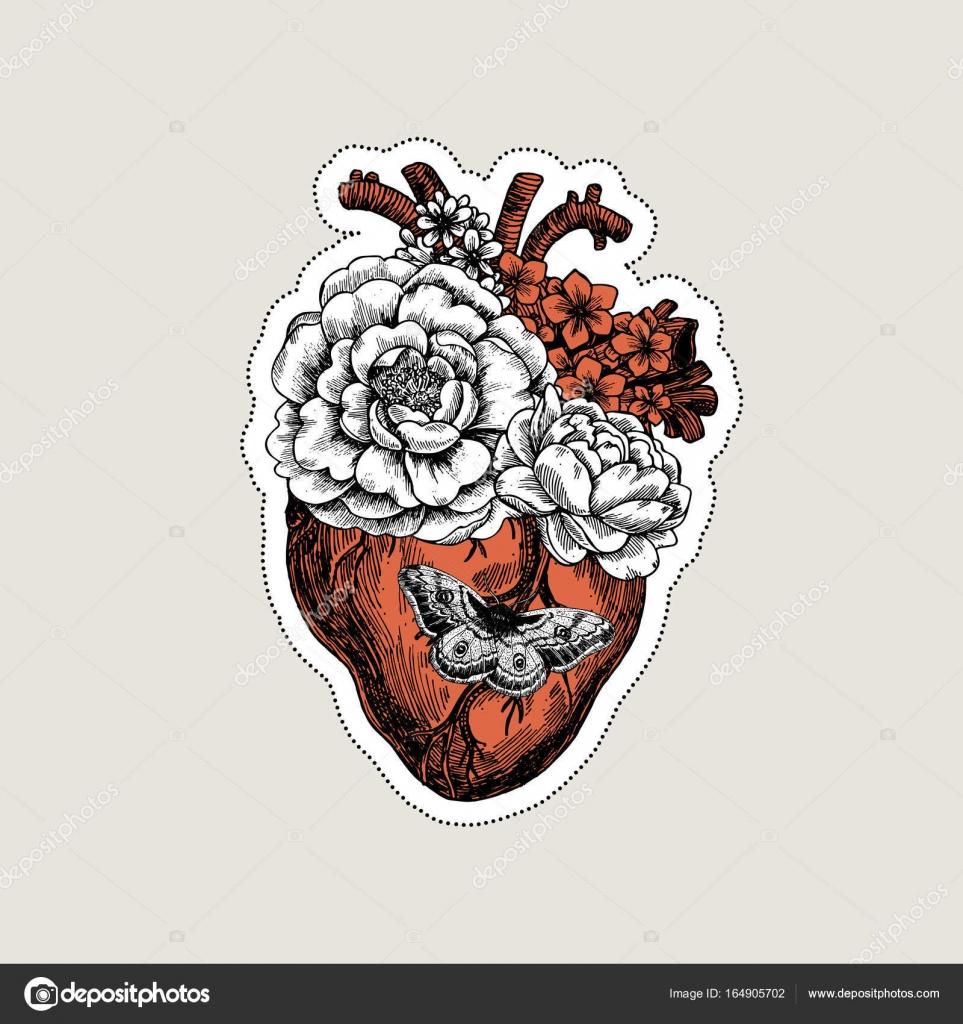 Tattoo Anatomy Vintage Illustration Floral Anatomical Heart Vector