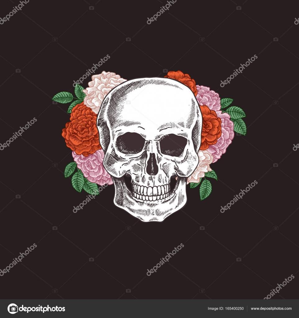Floral menschlichen Schädel. Tattoo Vintage Illustration Anatomie ...