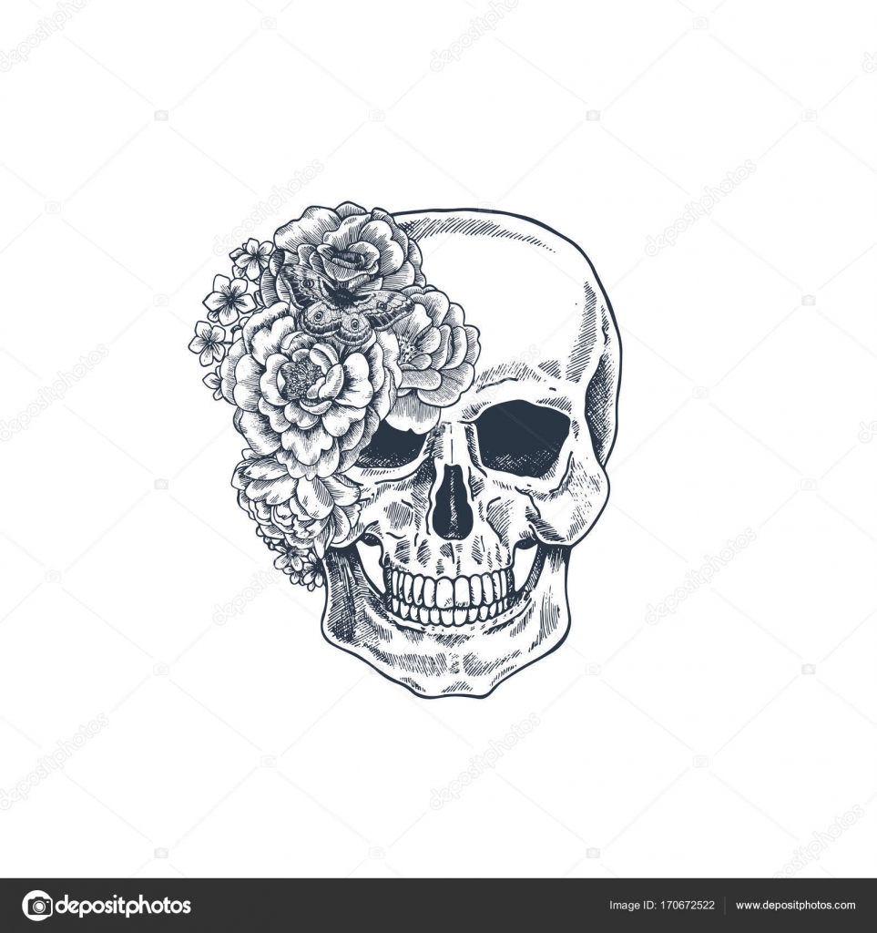 Tatuaje Flores Retro Ilustracion De Anatomia Craneo Floral Vintage