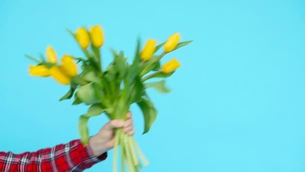 Kytice ze žlutých tulipánů v ženské ruce na modrém pozadí