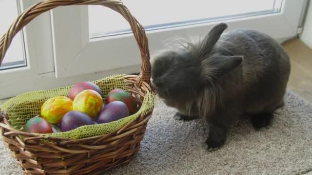 Húsvéti nyuszi kosárban színes tojásokkal, cukorkákkal és tulipánokkal a fa asztalon. Húsvét koncepció háttér.