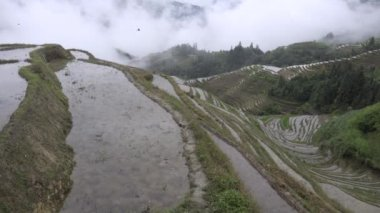 Valley of rice farming Ping an China