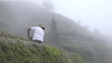 Chinese farmer works soil on a foggy morning