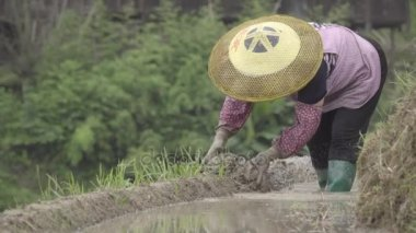 Female farmer wearing typical peasant hat