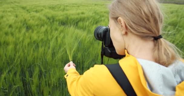 Atraktivní dáma fotí zelené pšeničné uši