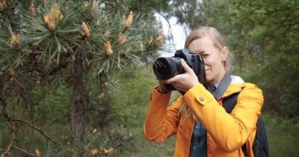 Veselá žena fotí borovice v zeleném lese