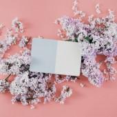 Fotografia Carta con i fiori lilla su sfondo rosa. Vista piana laico e superiore