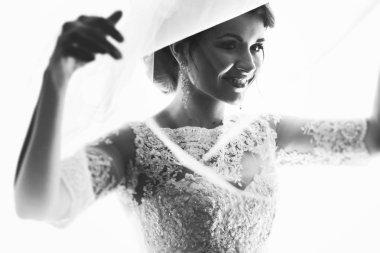 Elegant bride in lace gown under veil